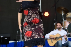 Latino_Festival_2016__(182_of_316)