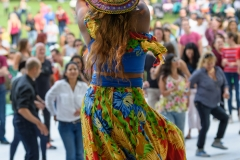 Latino_Festival_2016__(211_of_316)