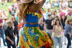 Latino_Festival_2016__(212_of_316)