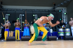 Latino_Festival_2016__(223_of_316)