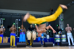 Latino_Festival_2016__(224_of_316)
