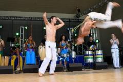 Latino_Festival_2016__(230_of_316)