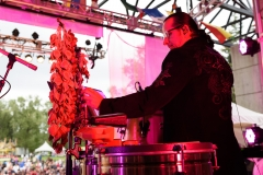 Latino_Festival_2016__(286_of_316)